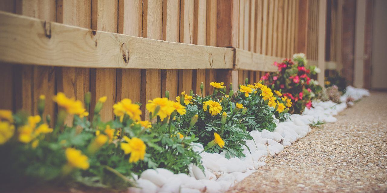 Easy DIY curb appeal projects